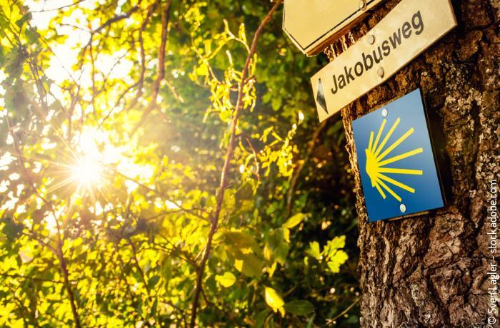 © Sven Lägler - stock.adobe.com